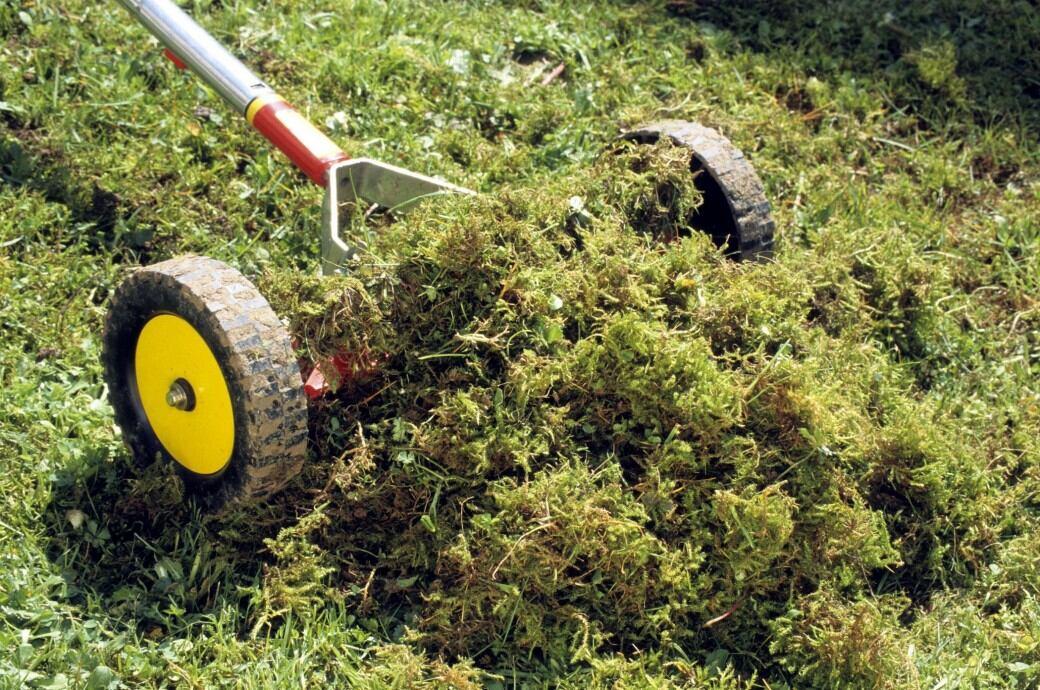 So Vertikutieren Sie Ihren Rasen Richtig