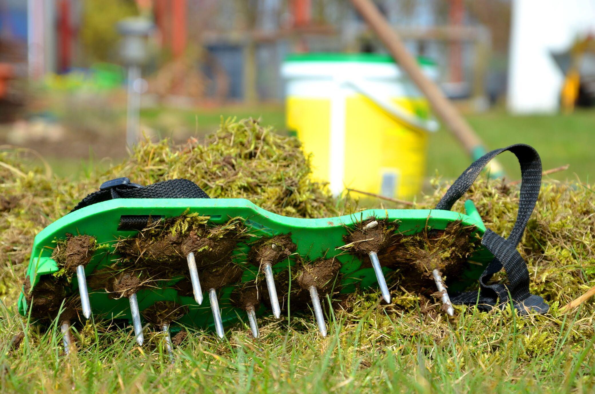 Wie Sie Ihren Rasen richtig lüften