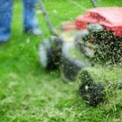 Jemand mäht mit Benzinrasenmäher den Rasen