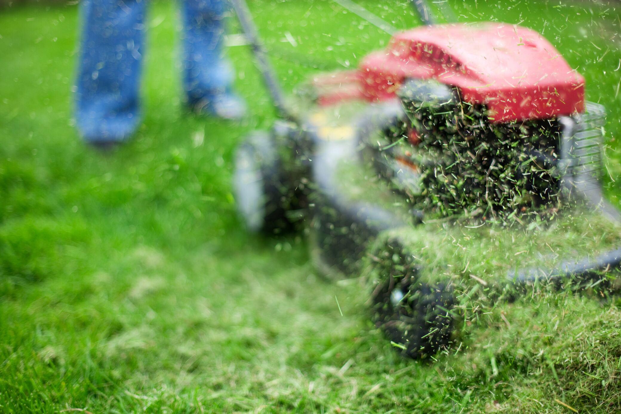 Wann darf ich meinen Rasen mähen?