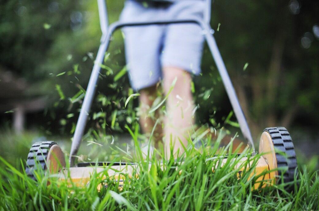 Rasenmäher beim Mähen