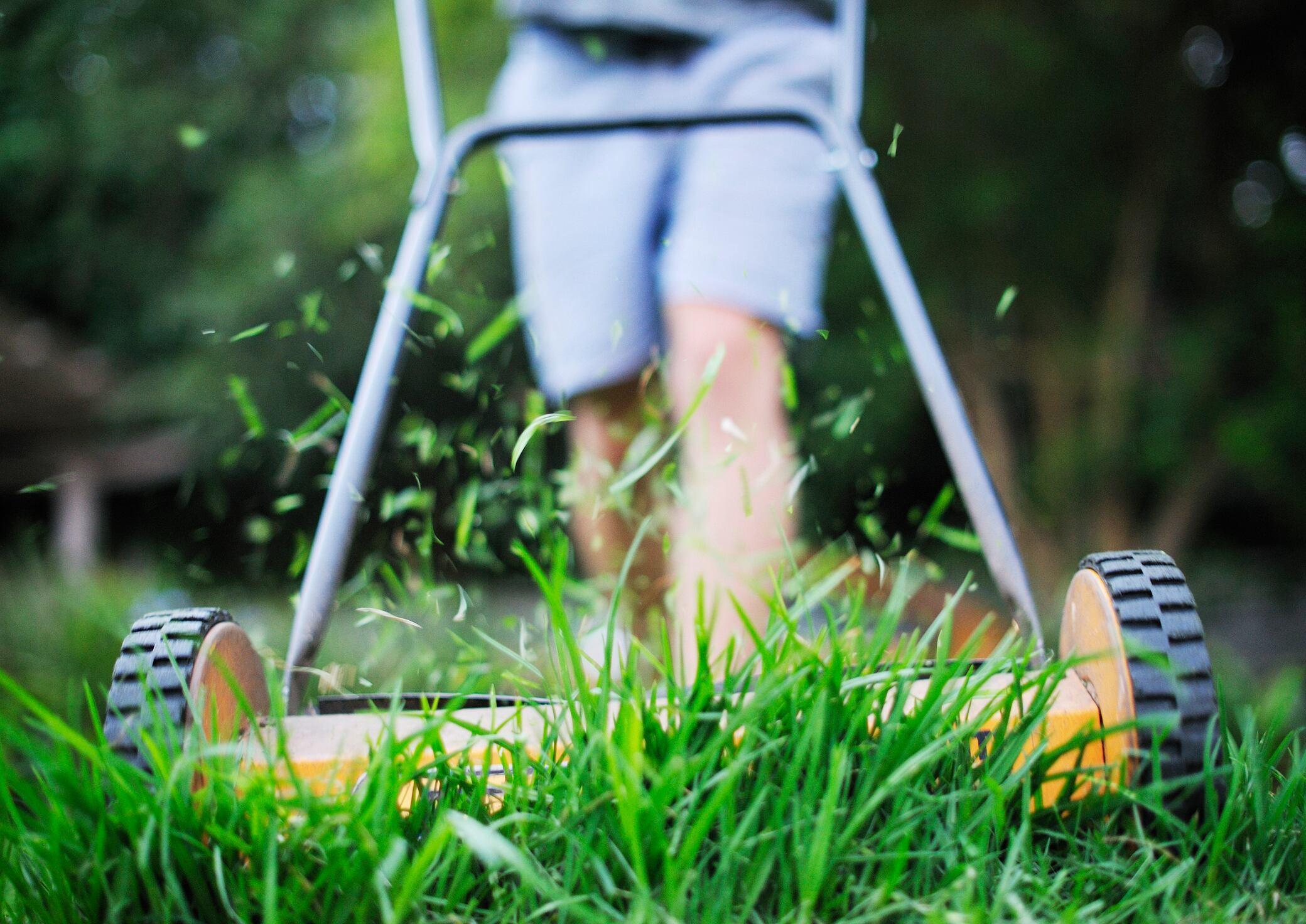 Wie Sie in 5 Schritten das Rasenmähermesser schärfen