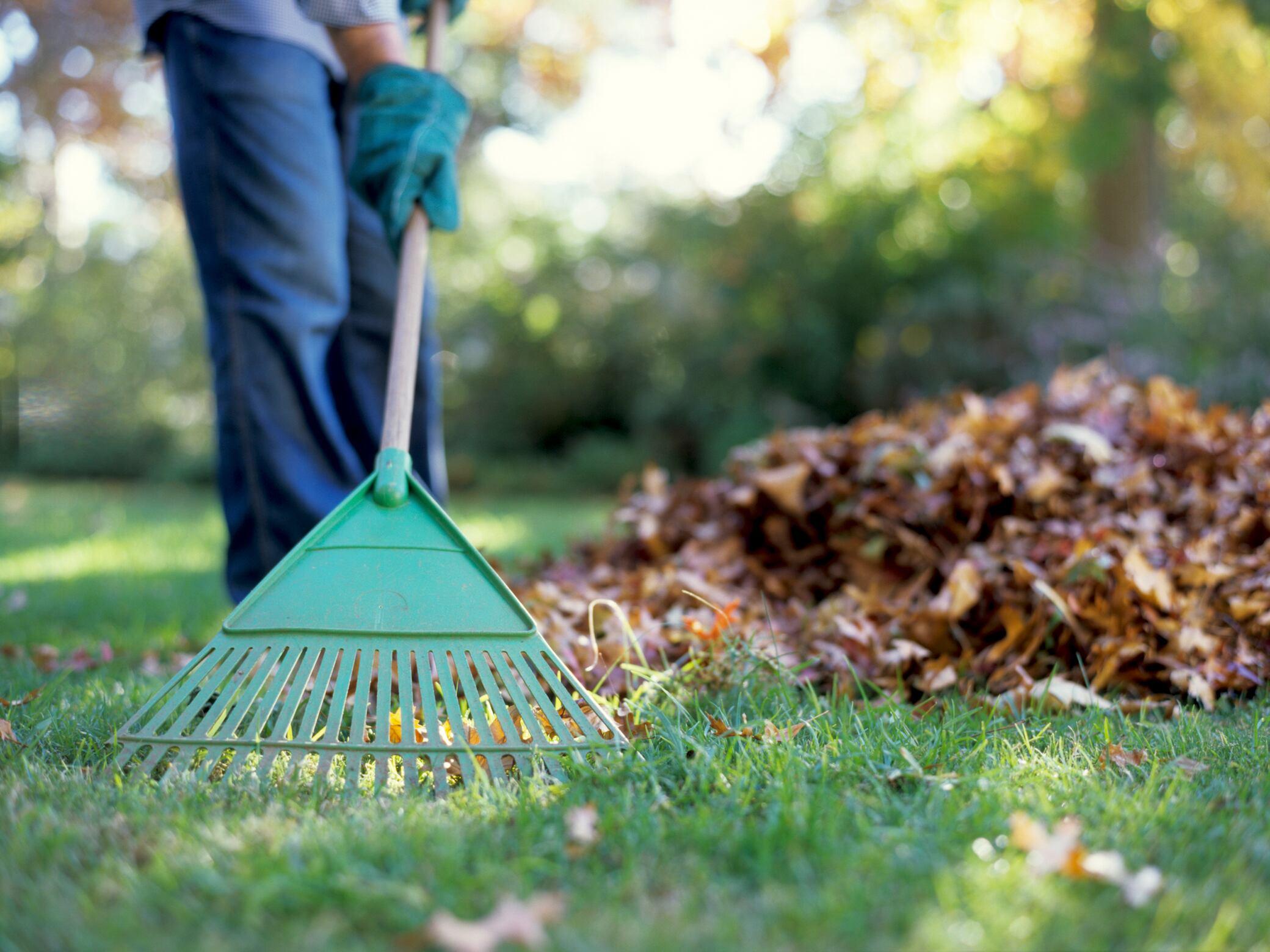 Warum die Pflege des Rasen im Herbst so wichtig ist
