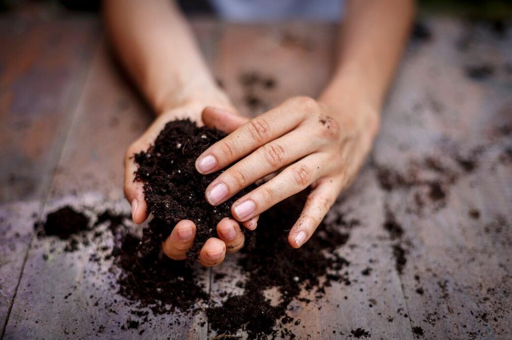 Bei Mutterboden handelt es sich um eine ganz spezielle Erde