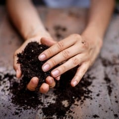 Mutterboden ist reicht an Nährstoffen