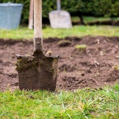 Was Sie tun müssen, um Ihren Rasen zu erneuern