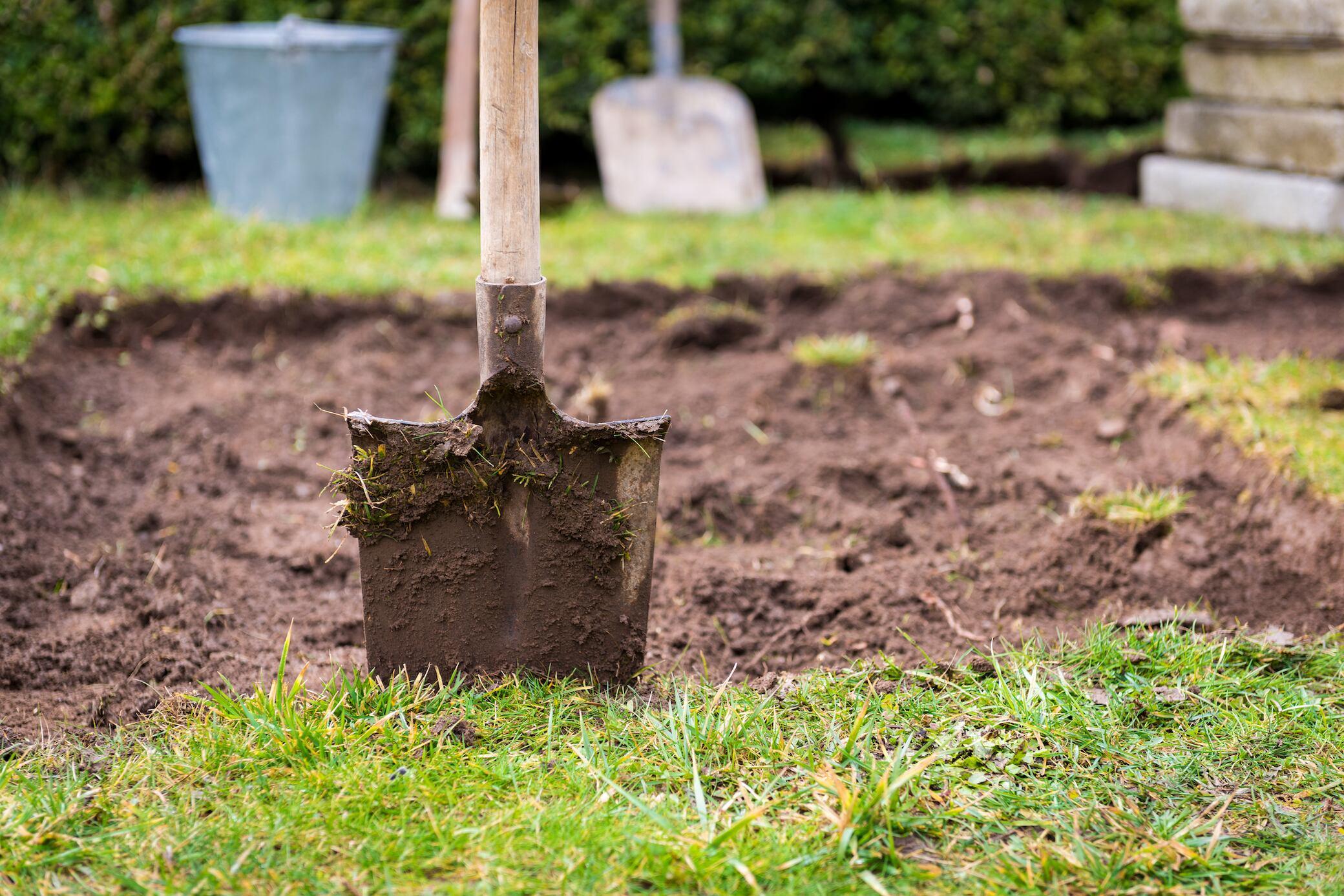 In 6 Schritten den Rasen erneuern