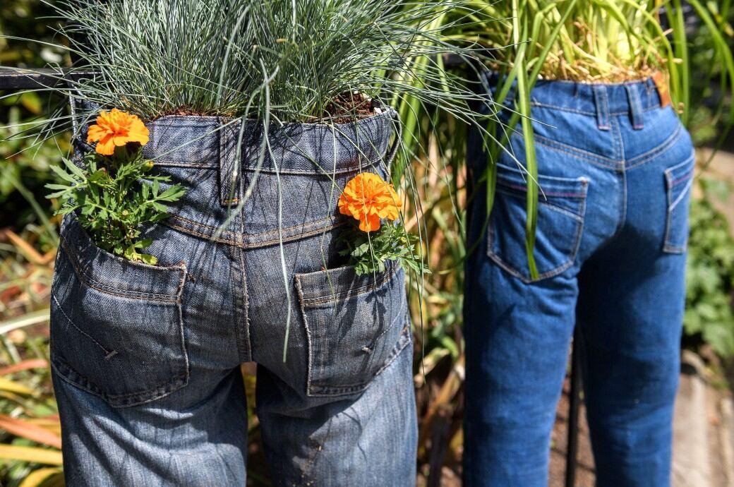 Wie Sie eine Jeans in ein Pflanzgefäß verwandeln