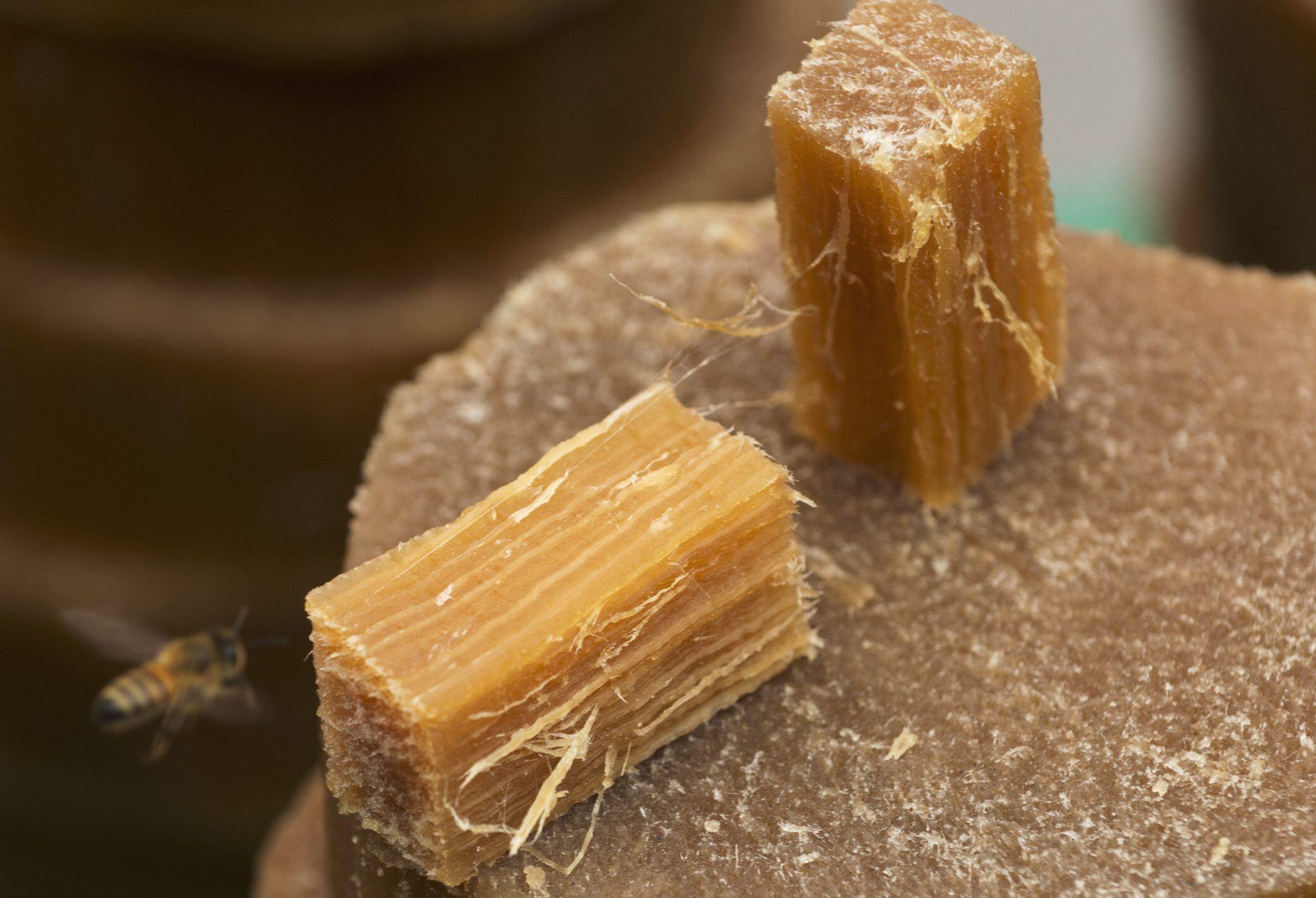 So machen Sie Bienenwachstücher selbst
