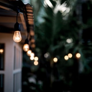 Decorative outdoor string lights hanging on tree in a tropical garden