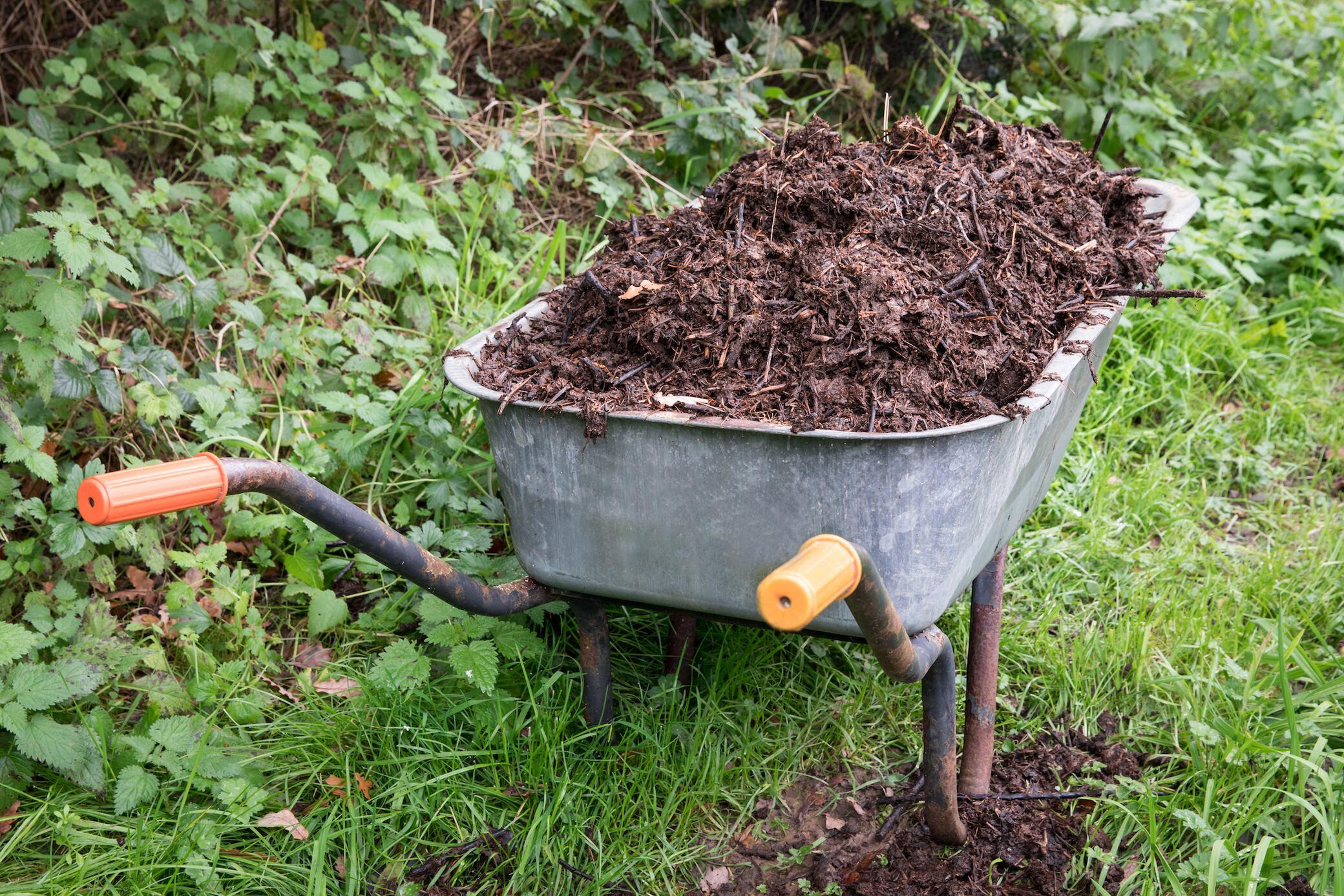 Was mache ich am besten mit Komposterde?