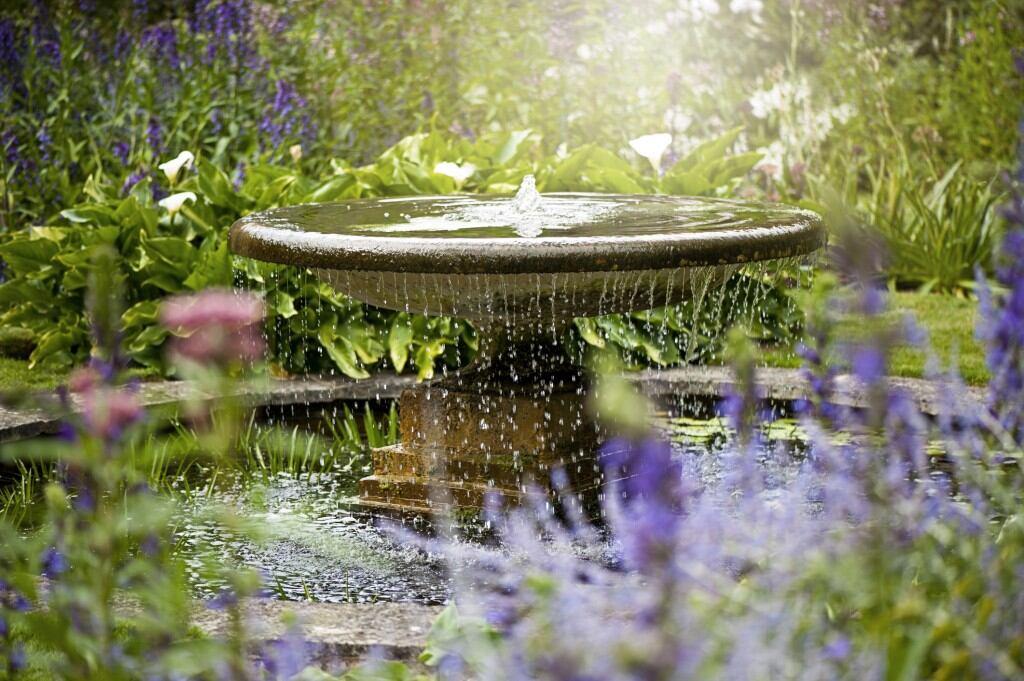 Ein Teich im Garten ist schön, muss aber geplant sein