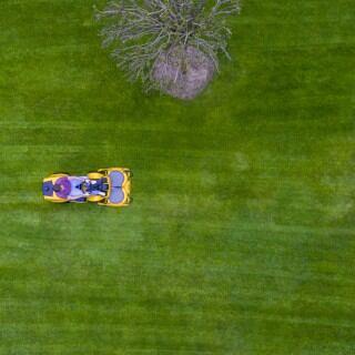 Ein schöner Rasen ist kein Hexenwerk. Man muss nur ein paar Regeln und Grundlagen beachten