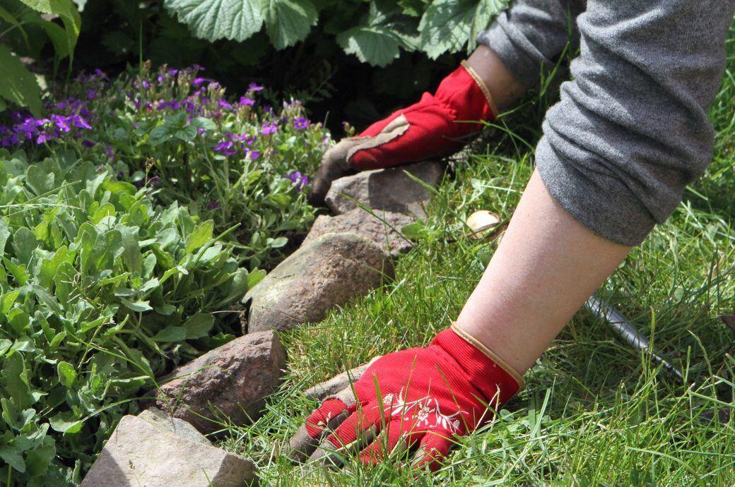 Fabelhaft Warum Sie im Garten eine Beetabgrenzung benötigen - myHOMEBOOK #TP_67