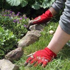 Beetabgrenzung Steine