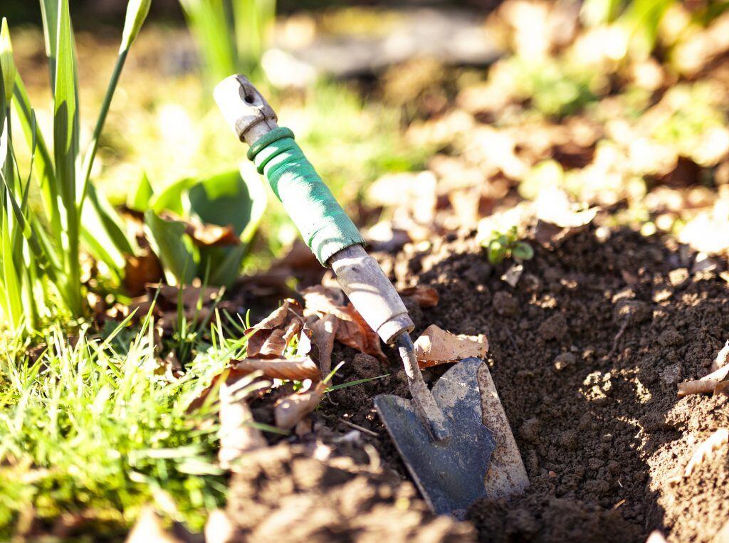 Bodenprobe dank einer Bodenkelle