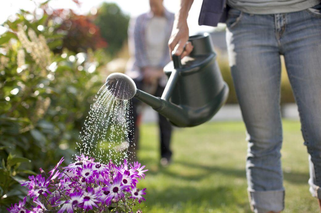 Frau gießt Pflanzen im Garten