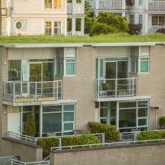 Ein begrüntes Dach: Wie wäre es mit einer Dachbegrünung auf Ihrem Dach