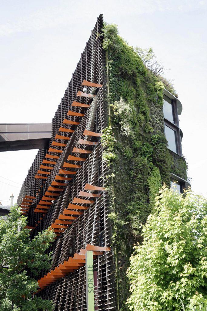 Eine begrünte Hausfassade kann richtig Eindruck machen