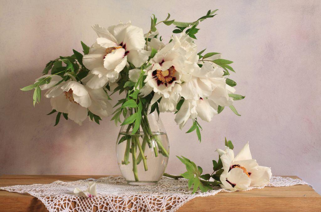 Vase mit weißen Blumen auf einem Tischchen