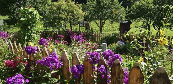 Tipps für die Pflege eines Gartenzauns