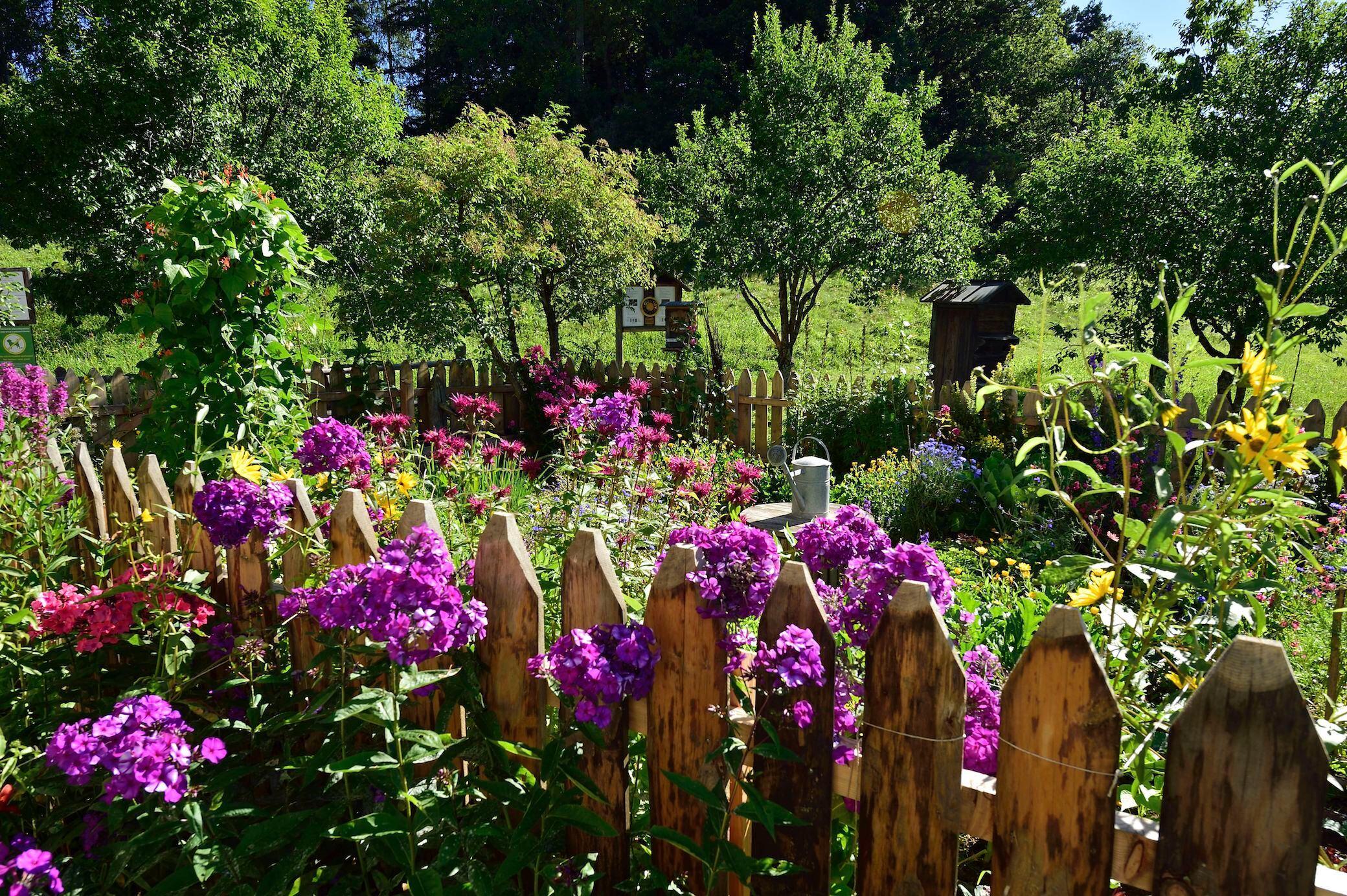 Wie Sie den Gartenzaun richtig pflegen