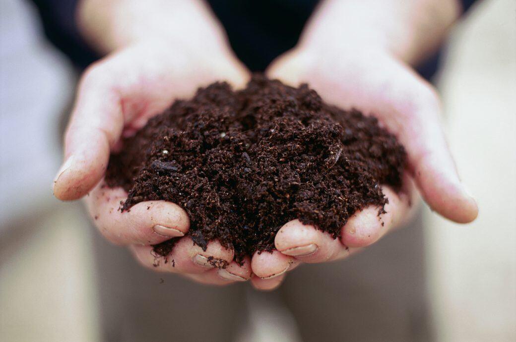 In einem Gramm Erdboden leben mehr Mikroorganismen, als es Menschen auf der Welt gibt