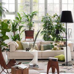 """Wohnzimmer mit vielen Grünpflanzen im """"Urban Jungle""""-Trend gestaltet"""
