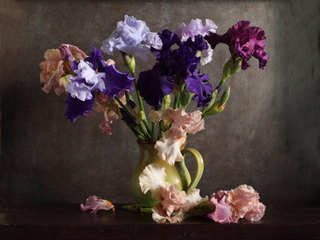 Die Bedeutung der Iris ist Weisheit und Hoffnung