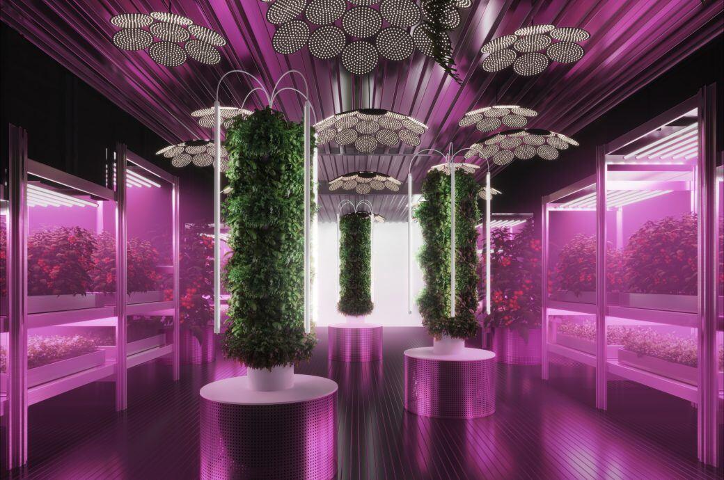Mit Pflanzen die Welt retten: Ikea und Designer Tom Dixon zeigen, wie's geht