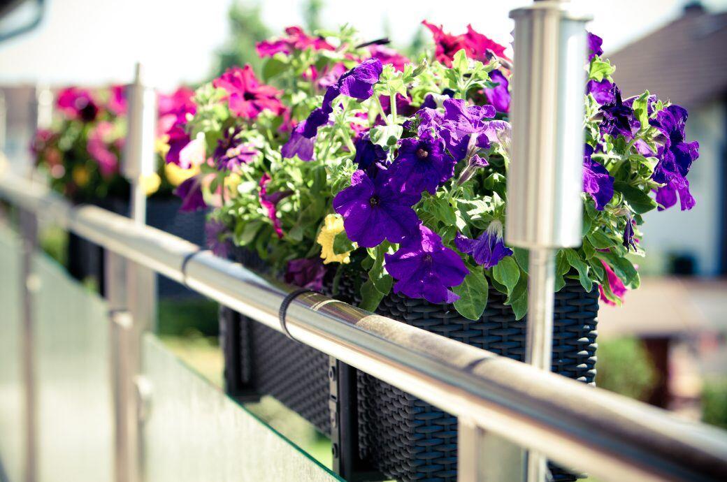 Bei Sturmwarnungen sollten Balkonkästen in Sicherheit gebracht werden