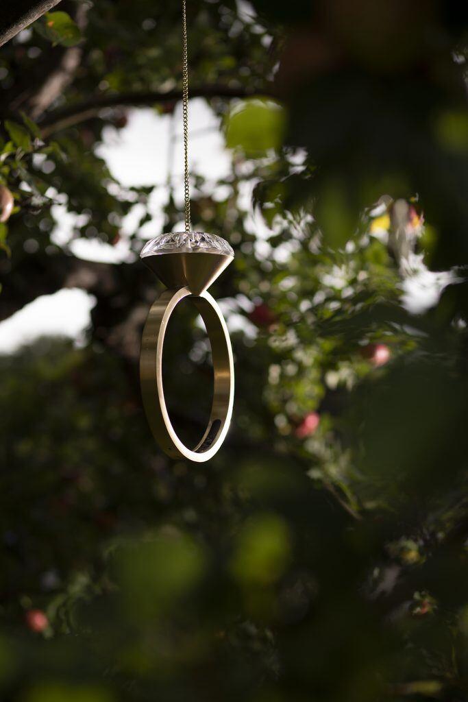 Garden Glory bietet als luxuriöse Gartenartikel auch Vogelhäuschen in Diamantringform an