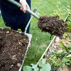 Frau gräbt Komposthaufen um