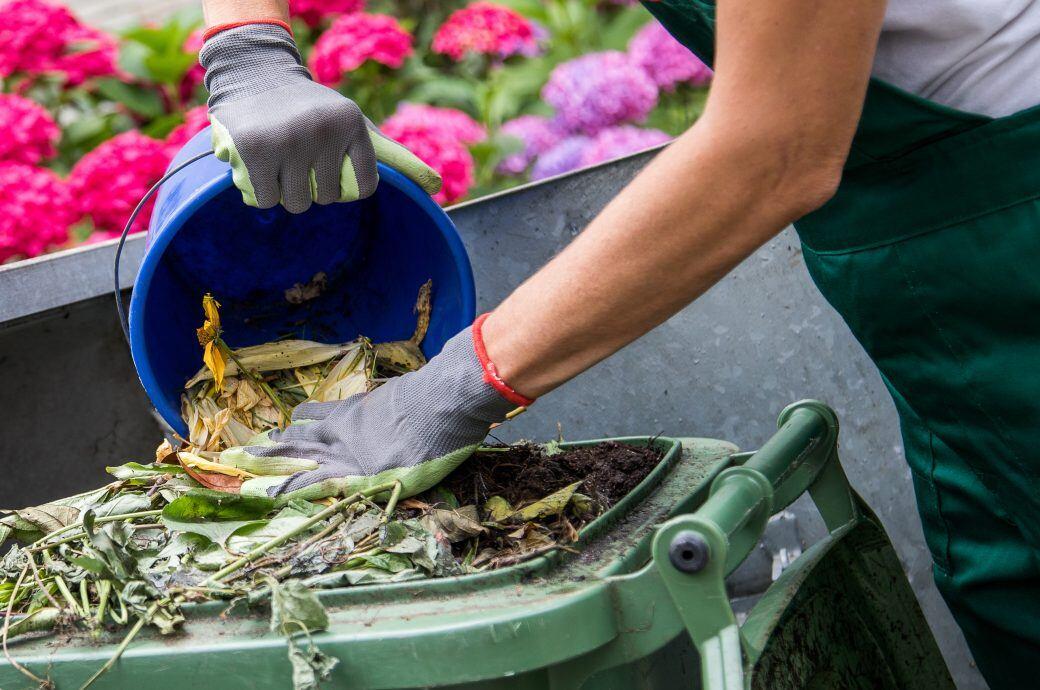 Was hilft gegen Mief und Maden in der Biotonne? - myHOMEBOOK
