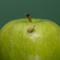 Wie man effektiv gegen den Apfelwickler vorgehen kann