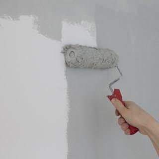 Wie Sie Wände richtig streichen
