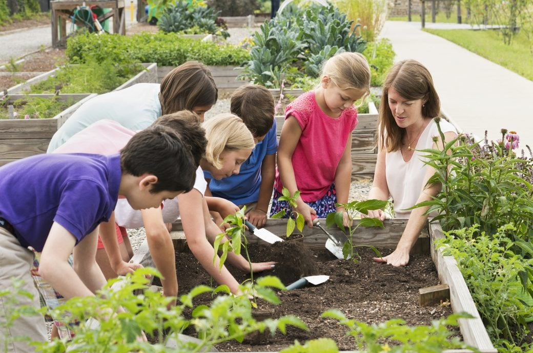 Wie man Kinder fürs Gärtnern begeistern kann