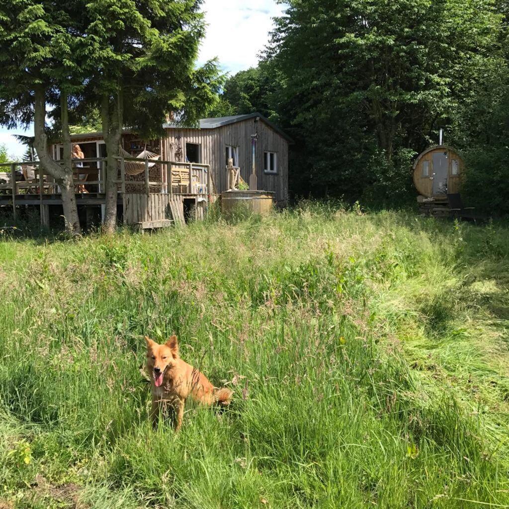 Thore Schölermanns selbst gebautes Haus
