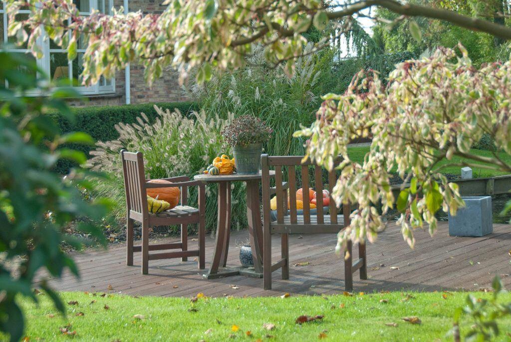 Herbstfärbung: Gartentisch mit Etagen-Hartriegel
