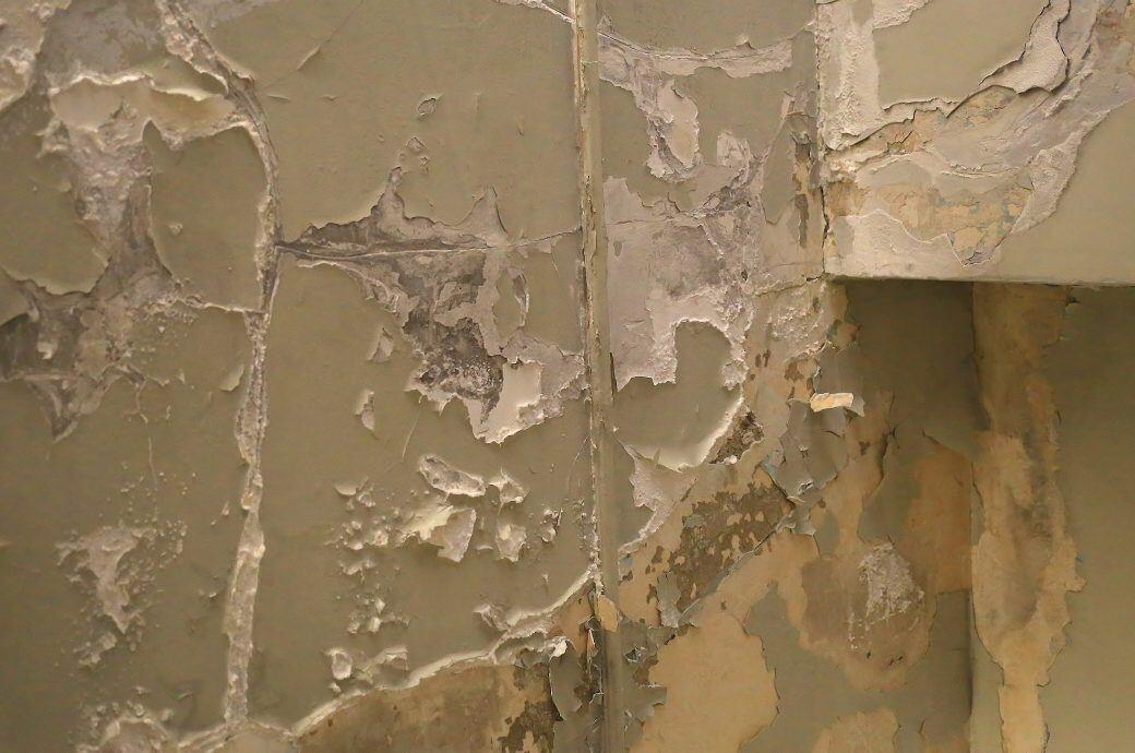Was man bei einer feuchten Wand tun sollte