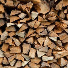 Wer mit einem Holzofen heizt, sollte jetzt zu einem bestimmten Holz greifen