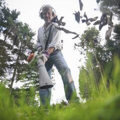 Laubsauger und -bläser kommen im vor allem im Herbst zum Einsatz. Tierschützer raten jedoch davon ab