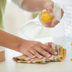 Putzen mit Sprühflasche