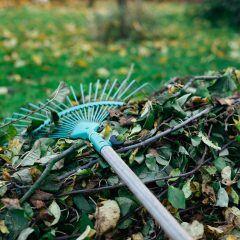 Diese Gartenarbeiten stehen im November an
