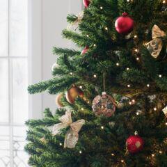 So viele Insekten leben in einem Weihnachtsbaum