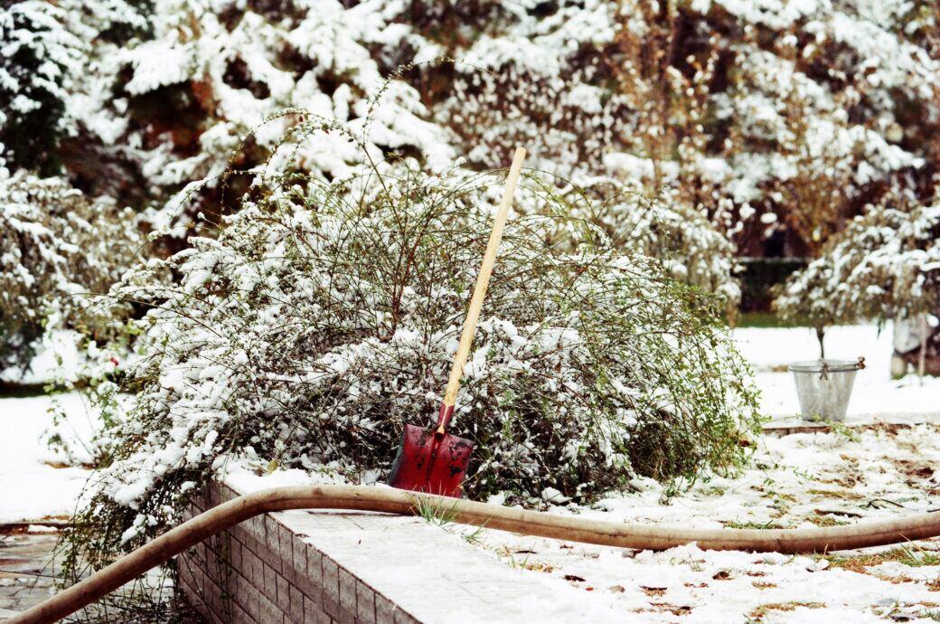 Auch im Winter gibt es Projekte für den Garten