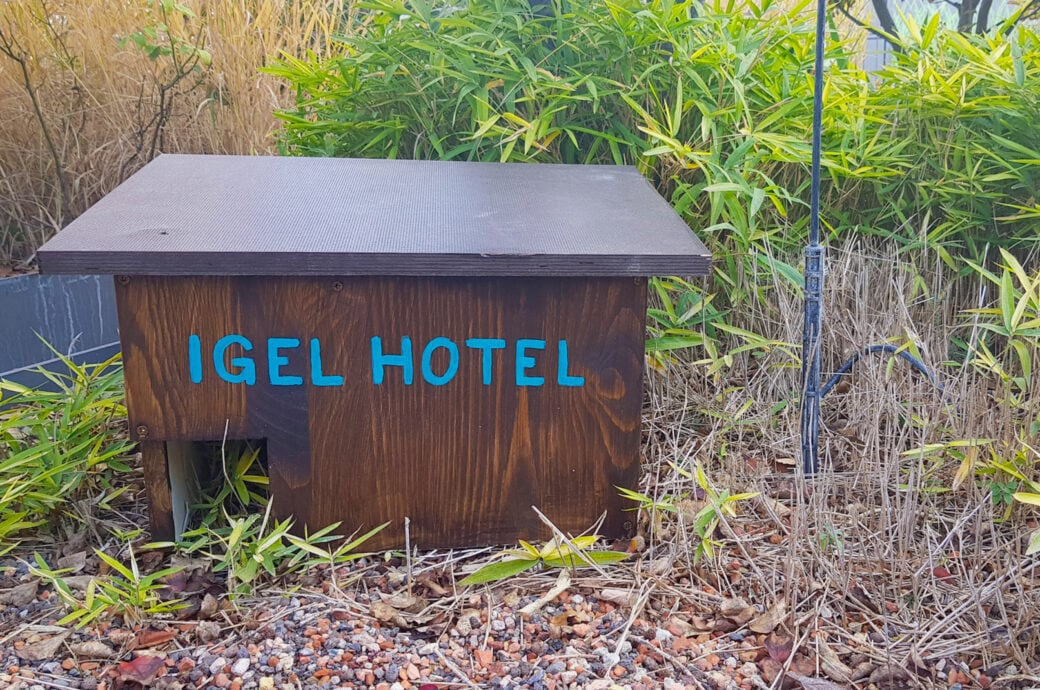 Igelhaus für den Garten selbst bauen mit Video-Anleitung