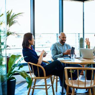 Pflanzen fürs Büro für ein besseres Arbeitsklima