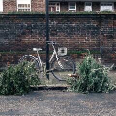 Verwerten statt wegwerfen – Upcycling-Ideen für den Weihnachtsbaum
