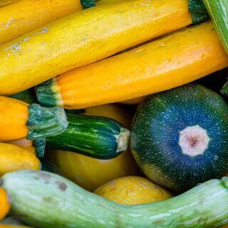 Verschiedenfarbige Zucchini liegen nebeneinander